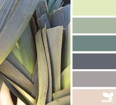 Palette ideas from Design Seeds Colour Pallette, Colour Schemes, Color Patterns, Color Combinations, Pantone, Design Seeds, Color Swatches, Color Stories, Warm Colors