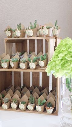 """Party Favors - Put """"Thank You"""" signage on table or in front (Use cactus or succu. Party Favors – Put """"Thank You"""" signage on table or in front (Use cactus or succulents)"""