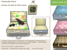{what next} Suitcase Cat Bed & Photo Frame