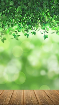 Nature bokeh hd wallpaper for your mobile phone