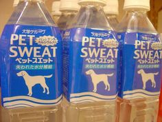 food-name-fails - Pet Sweat???