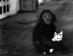 Black And White Photography by W. Eugene Smith