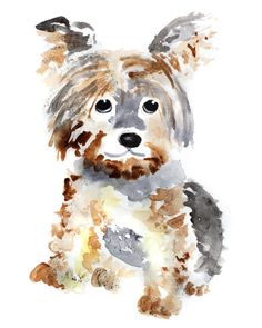 Yorkie Hund Kunst, Hund Kunstdruck, Aquarell Hund Malerei, Tiermalerei - Yorkie Sweet Pup, 8 x 10 - Акварель - Animal Paintings, Animal Drawings, Art Drawings, Art Watercolor, Watercolor Animals, Art And Illustration, Dog Portraits, Art Plastique, Yorkshire Terrier