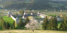 Viaggio in Romania dai Carpazi al Danubio, dal monastero di Voronet al Danubio.