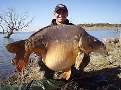 Carp fishing Hell, I don't get it either.