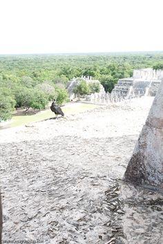 Este es un recorrido virtual de 360° por 180° dentro de la Zona Arqueol'ogica de Chichén Itzá, en Yucatán. Visitaremos la la Pirámide de Kukulkán y el Templo.