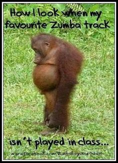 12 Health Benefits Of Zumba – 5 Min To Health Zumba Fitness, Zumba Funny, Zumba Quotes, Dance Quotes, Funny Quotes, Zumba Kids, Zumba Instructor, Dieta Low, Meme Pictures