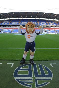 Bolton Wanderers - Lofty the Lion.