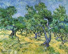 Olive Grove by Vincent Van Gogh - Oil Painting Reproduction - BrushWiz.com
