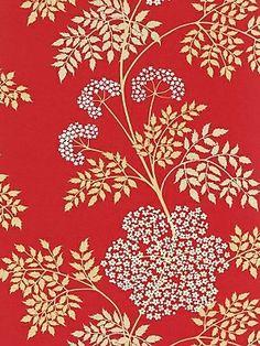 Sanderson Wallpaper Cow Parsley  Scarlet