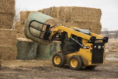 Cat 232D Skid Steer Loader | Dairy Herd Management skid steer loader training www.scissorlift.training