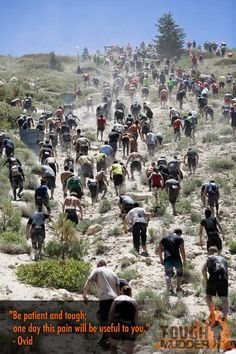 """Tough Mudder - """"Be patient and tough; one day this pain will be useful to you."""" ~Ovid"""