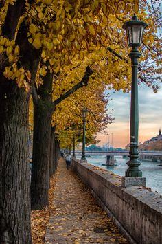 Autumn in Lungadige, Verona, Italy