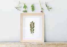 Pressed real leaf. Herbarium. Pressed flowers art. Botanical