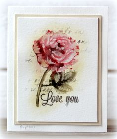 IC390 Rose