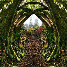 Secret Garden, Portland, Oregon photo via kyra