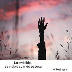 Lo invisible, nuestros deseos negados, se hacen posibles cuando entramos en contacto con ellos. Amor y asexualidad. Frases para el diálogo