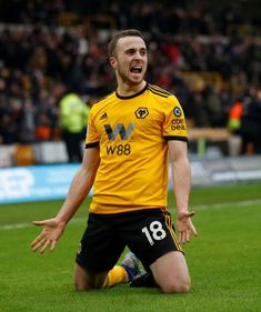Wolves Leicester - Jota completes hat-trick in injury time to win thriller Inspirational Quotes Background, Quote Backgrounds, Wolverhampton Wanderers Fc, Leicester, Favorite Person, Football Players, Wolves, Premier League, Liverpool