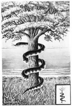 The snake as protector at a sacred tree is seen in Biblical and Norse mythology, as well as in the tales of the Bodhi tree of Buddhism.