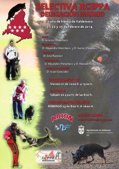 Cartel de la SELECTIVA, organizada por la delegación Madrid del Real CEPPA. #Ceppa #Valdemoro