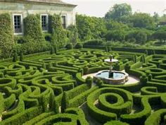 Everyone needs a maze