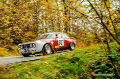 Very nice Alfa Romeo GTAM