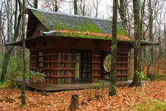 Traditional Japanese Tea House on the grounds of my mountain log home. I imagine walking down the winding path in the other picture.