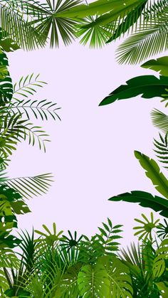 Tropical Art, Tropical Leaves, Green Grass Background, Instagram Feed Layout, Baby Room Themes, African Theme, Poster Background Design, Borders And Frames, Flower Wallpaper