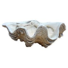 Hand cast in gypsum, the Mini Clam Shell is a decorative accent with a realistic fossil finish. Perfect for coastal or casual styled rooms, it is an ideal holder for your small trinkets and tokens and can be set on a dresser or nightstand. Garden Accessories, Decorative Accessories, Newborn Beach Photography, Decorative Objects, Decorative Bowls, Coffee Table Arrangements, Giant Clam Shell, Hand Cast, Room Themes