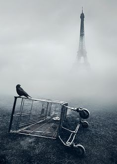 Is it the Post-Apocalyptic Paris, or an errant shopping cart in the fog?