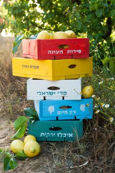 Fruit and vegetables wooden boxes tutorial - 'Wow To' Magazine by Dana Israeli - craft projects, decorating ideas, party tips and inspiration