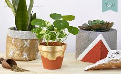 Stylist Emmaly Stewart added a little metallic magic to three different plant holders. Whether you love the soft hessian pot holder with a customised pattern, the rustic gold-leaf terracotta or the hard-edged masonry with copper feature, you can achieve...