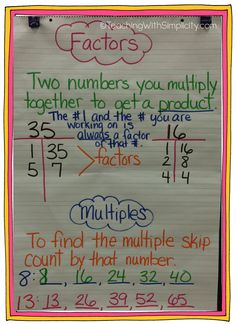 factors and multiples                                                       …