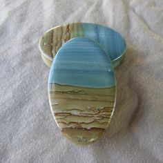 Wild Horse Picture Jasper Oval Plugs by Aesthetics