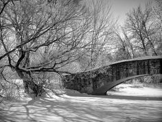 Old Stone Bridge at Tenney Park in Winter (P1098973)