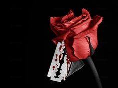 A black and white image of a rose with a bloody razor blade, Image Red Aesthetic, Aesthetic Pictures, Aesthetic Themes, Wallpapers Rosa, Bleeding Rose, Broken Heart Drawings, Dark Art Photography, Blood Art, Rose Images