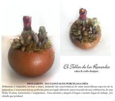 Suculentas y Cactus en porcelana fría - Adorno hogar oficina - Souvenir - Regalo