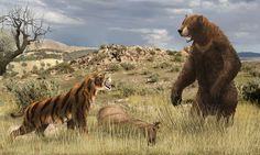 Smilodon vs Arctodus(revised and colored) by Leogon.deviantart.com on @deviantART
