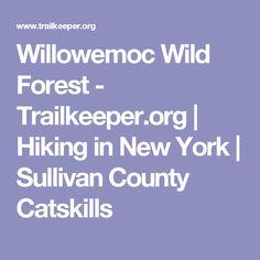 Willowemoc Wild Forest - Trailkeeper.org | Hiking in New York | Sullivan County Catskills