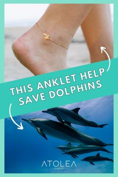 Every purchase of our ocean jewelries help save the dolphins and other marine animals. Be a part of this mission. Learn more about our advocacy at atoleajewelry.com
