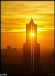 Utrecht, Empire State Building, Sunlight, Monument Valley, City, Places, Nature, Travel, Poster