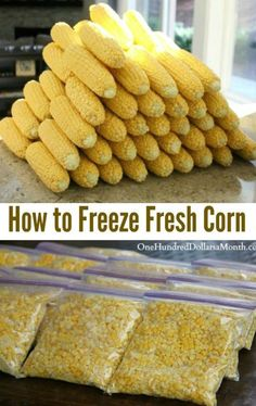 How to Freeze Fresh Corn One Hundred Dollars a Month is part of Freezing fresh corn I never thought the shucking would end, but it finally did Thanks to the Handsome Husband I now have enough corn - Freezing Fresh Corn, Freezing Vegetables, Canning Vegetables, Frozen Vegetables, Fruits And Veggies, Freezing Fruit, Freezing Green Beans, Fresco, Canning Food Preservation