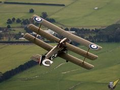 Modern flying reproductions of WWI aircraft, Masterton New Zealand Sopwith Triplane2.jpg