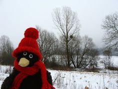 Erwin liebt den Winter!