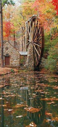 Autumnal Awe