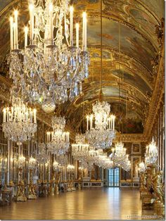 Palace of Versailles! @Terri Osborne McElwee Eddington  you must visit while you are in the area- Marie Antoinette's small chateau is located close by too!