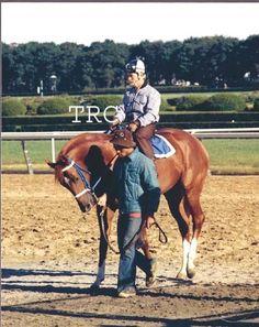 SECRETARIAT & RON TURCOTTE - ORIGINAL 8X10 PHOTO OF BELMONT PARK GRASS WORK! in Sports Mem, Cards & Fan Shop, Fan Apparel & Souvenirs, Horse Racing | eBay