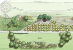 anthroagronomy: Beacon Hill Food Forest: A proposed permaculture foraging food forest in an urban Seattle park. NPR article regarding Beacon Food Forest Urban Agriculture, Urban Farming, Edible Plants, Edible Garden, Beacon Food, Seattle Food, Downtown Seattle, Permaculture Design, Forest Garden