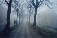 picture of most haunted road