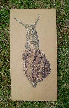 Snail Drawing on brown paper Original Artwork by ouroboros81, $75.00